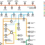 Sacramento Startup Ecosystem Circuit Board/Subway Map v1.2
