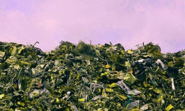 Cleantech Meetup – Waste Conversion: BioMass, BioFuels, BioChem